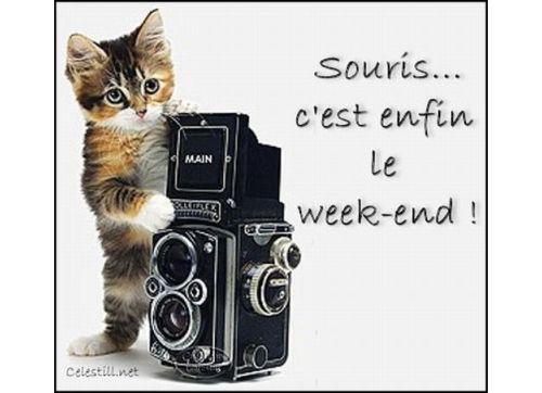 souris_cest_enfin_le_week_end