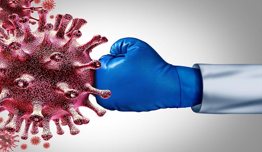 Koronoios griph igmoritida